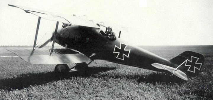 LFG Roland D.I / D.II